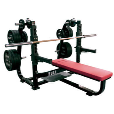 OLYMPIC SPINE BENCH EX